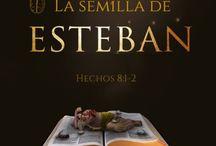 La semilla de Esteban / http://pasionporlapalabra.com/la-semilla-esteban/