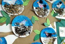 """Vogels / Materialen passend bij het thema """"Vogels""""."""