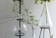p l a n t e r / Different ways to create a good atmosphere with plants