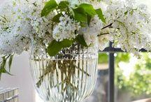 Vases & Crystal