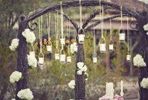 secret garden. / by Alyse Catherine