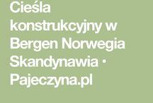Praca Za Granicą - Oferty pracy w Europie - Darmowe ogłoszenia - www.Pajeczyna.pl