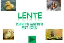 Lente school