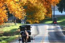 Amish Life / by Jody Browne