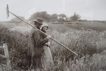 Sutcliffe, Frank Meadow (1853-1941)