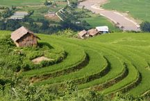 Vietnam Experiences / Travel experience in Vietnam, Vietnam Photos and culture.