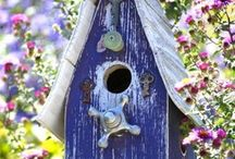 bird houses / by Martha Guillotte