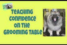 Correction Free Dog Grooming / All about training your dog to accept grooming with food rewards and the clicker and WITHOUT corrections.
