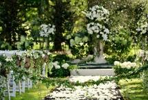 weddings / by Emily Waddell