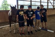 Leadership Development / Equine Assisted Youth Leadership Programs at Dreamwinds Equine Assisted Learning Centre