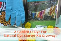 Natural Dyes for Food and Fiber / Dye plants, plant dye gardens, experiments with natural dyes, nature dye crafts and upcycles.