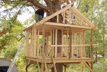 Casas na árvore / Casas na árvore
