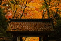 Aichi Trip / Sukiyaki Trip is curation app ,Japan tourism information. Comming soon !!!