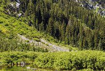 Nature - Cascades