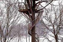 Dog Treehouse