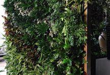 térelválasztó terasz kert