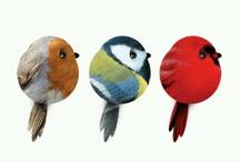 Vogeltjes / Ik hou van dieren dus ook van vogels