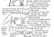 Drawing Animals / Animals - How To Draw / by Kate Palmer