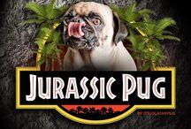 Jurassic Pugs