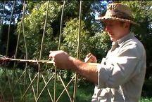 Garden Willow structures