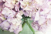 Pretty Pastel Things / all things pretty / by Such Pretty Things (by Jessica Enig)