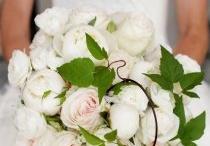 Wedding Flowers - Neutrals