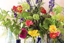 Floral /Boutique