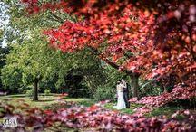 Wedding Reportage / Reportage di matrimonio