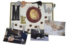 Dress It Up Buttons with Pet Crafts / Embellish your pets accessories with Dress It Up Buttons