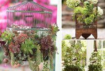 GIARDINI VERTICALI / Composizioni verdi realizzate con il riciclo creativo dei materiali