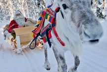 Santa Claus, Lapland / Santa Claus, elves and reindeers, they do exist! Visit the real Santa Claus in Rovaniemi, Finland.