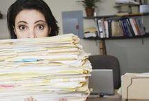 documentos organizacao