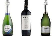 descobrindo o mundo dos vinhos