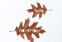 hello meses