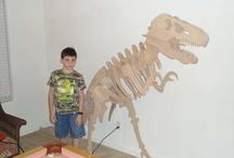 Library Displays - Dinosaurs