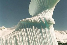 Icebergs & Polar Wonders