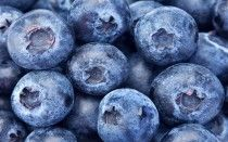 Happy National Blueberry Month!