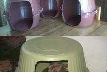 Casinha de Dog