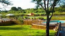 Sabie River Bush Lodge / Sabie River Bush Lodge is one of the lodges used by Nhongo Safaris on our safaris to the Kruger National Park. Situated nineteen kilometres from the Paul Kruger Gate which is the main gate to the Kruger National Park. and into one of the best game viewing areas of the park.