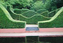Former Rose Garden