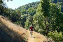 Locations: China Camp  / China Camp is a state park out side of San Rafael.  Great place for biking, hiking and camping
