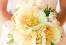 Yellow Bouquets / Bouquets from Anne Griggs Productions