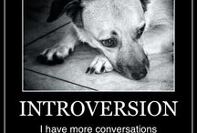 Inside the Introvert