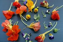 Garnish Idea Bank / We hope these garnishes inspire you to create outstanding looking plates of food!