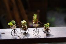 Wee Garden / Blissful fairy garden ideas / by Mary Fenwick-West