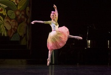 Interviews with professional ballet dancers