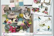 Zesty Designs Personal Use Products / Personal Use Scrap Kits, Collections and Individual Products.