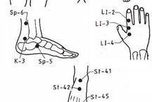 akupunktura,dráhy