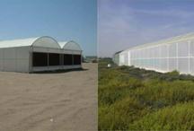 Agro Innovatie / Mogelijke zaken die in Curacao toegepast, onderzocht en uitgewerkt kunnen worden