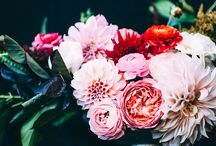 Wedding Florals / Inspiring pictures of wedding flowers, wedding centerpieces and wedding bouquets to guide you through your journey of finding the perfect floral arrangement.  / by Hyatt Regency Boston